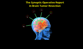 Synoptic Operative Report in Brain Tumor Surgery
