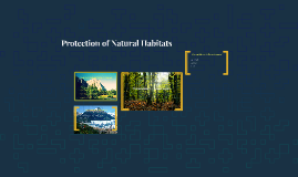 Protection of Natural Habitats