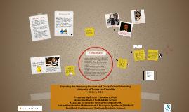 Exploring the Mentoring Process and Cross-Cultural Mentoring
