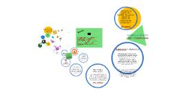 Del paradigma de complejidad a la P4