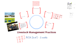 Livestock Management Practices - 11AGR NCEA revision