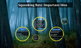 Squeaking Bats Important Ideas