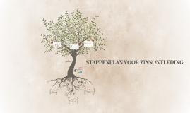 STAPPENPLAN VOOR ZINSONTLEDING