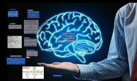 Cognitive Theories: Information Processing Model