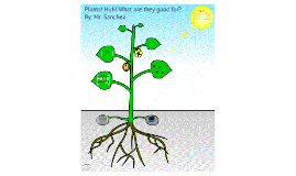 Copy of Plants Webquest