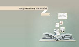 Copy of categorización y causalidad