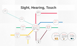 Copy of Sight, Hearing, Touch