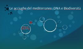 Le acciughe del mediterraneo : DNA e Biodiversità