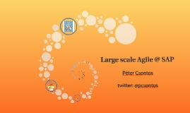 Large scale Agile @ SAP