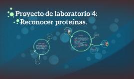 Proyecto de laboratorio 4: