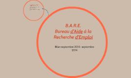 Copy of B.A.R.E.
