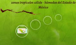 zonas tropicales cálido - húmedas del Estado de México