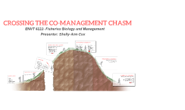 Crossing the co-management chasm