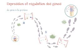 Expression et régulation des gènes
