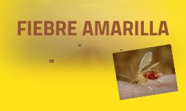 FIEBRE AMARILLA