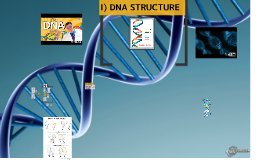 Copy of DNA Structure