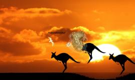 The Australian Culture