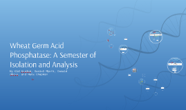 Wheat Germ Acid Phosphatase: A Semester Isolation and Analys