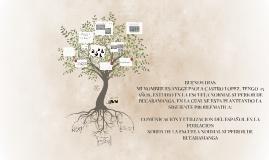 Copy of BUENOS DIAS