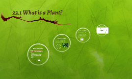 22.1 What is a Plant?