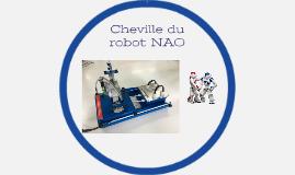 Cheville du robot NAO