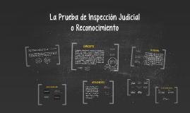 Copy of La Prueba de Inspección Judicial
