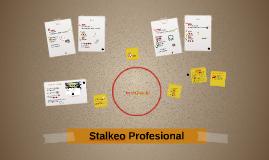 Stalkeo Profesional