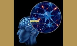 Historia de Neuropsicologia Linea del Tiempo