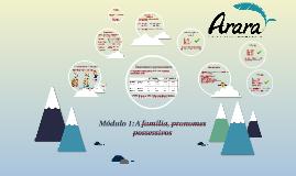 Módulo 1: A família, pronomes possessivos
