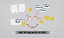 PULSE felmérés 2013/11