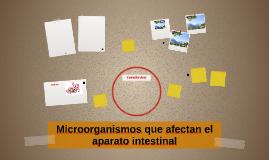 microorganismos que