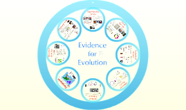Copy of AP Bio- Evolution 2:  Evidence of Evolution