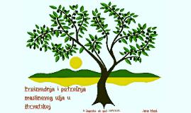 Proizvodnja i potrošnja  maslinovog ulja u Hrvatskoj