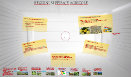Copy of REGIUNI SI PEISAJE AGRICOLE PE GLOB