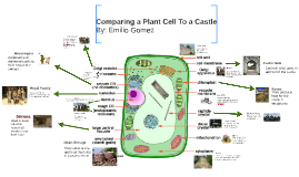 Comparing a Plant Cell To a Castle