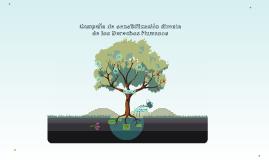 Copy of Campaña de sensibilización