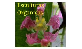 Copy of Esculturas Organicas