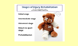 stages of rehabilitation