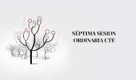 SÉPTIMA SESION ORDINARIA