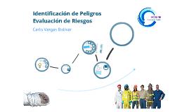 Copy of Identificación de Peligros y Evaluación de Riesgos