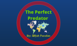 Perfect Predator
