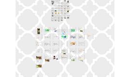 Copy of Göçebe ve yerleşik toplumlar