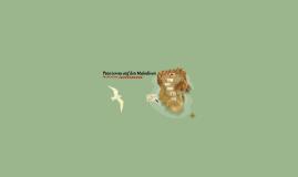 Tourismus auf den Malediven