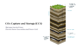 CO2 Capture and Storage (CCS)