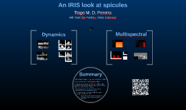 An IRIS look at spicules