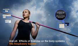 1.6 Unit 18- Effects of Exercise on the body systems - The Respiratory System