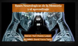 Bases Neuronales de la Memoria