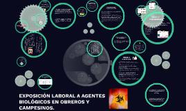 EXPOSICIÓN A AGENTES BIOLÓGICOS BY EVA PASTRANA
