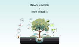 Copy of Regimen Municipal y medio ambiente