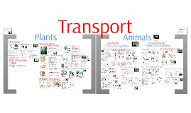Copy of AP Bio- Regulation 5: Transport & Gas Exchange